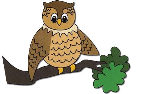 owl_cutout_500